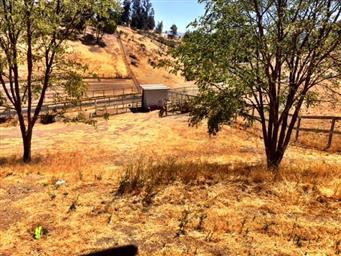 50920 Pine Canyon Road Photo #22