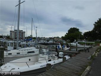 700 Cattail Cove #401 Photo #17