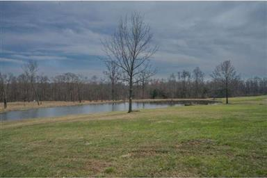 320 W CAMPING AREA RD #LOT 9 Photo #8