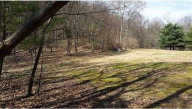 22892 Hollow Road Photo #18