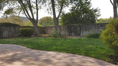 21952 Green Sage Court Photo #6