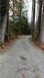 16104 Mission Church Road Photo #6