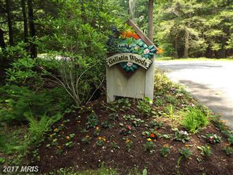 95 Gallatin Drive #3 Photo #2