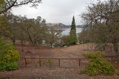 14854 Lakefront Drive Photo #19