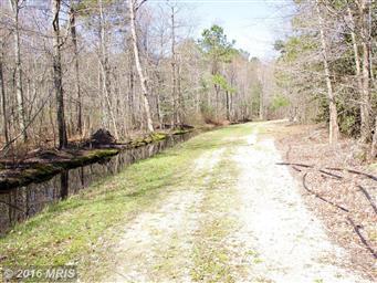 2107 Church Creek Road Photo #30