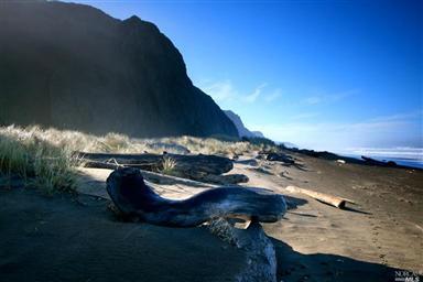 15300 Irish Beach Drive Photo #18