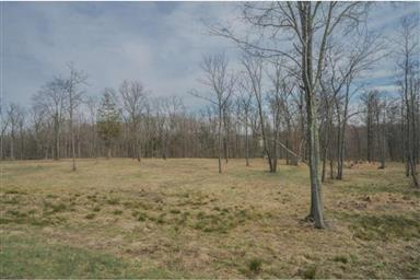 320 W Camping Area Road #LOT 1 Photo #14