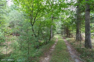 20542 Dovesville Road Photo #27