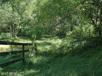 4 Wolf Mountain Lane Photo #24