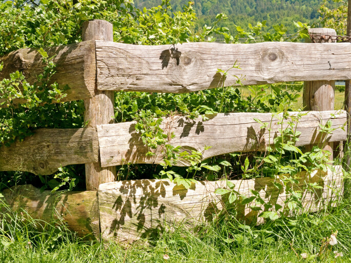 Hewn log fence features three thick horizontal beams and cylindrical posts.