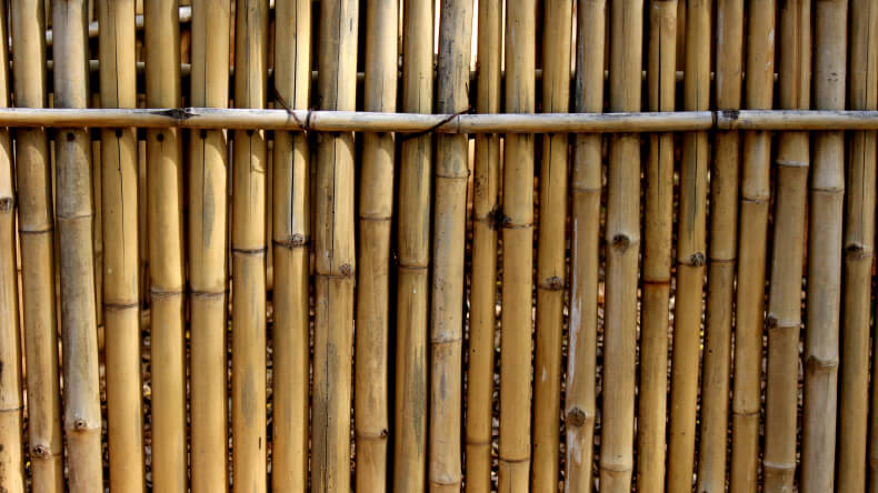Here's a natural bamboo fence, with minimal gap.