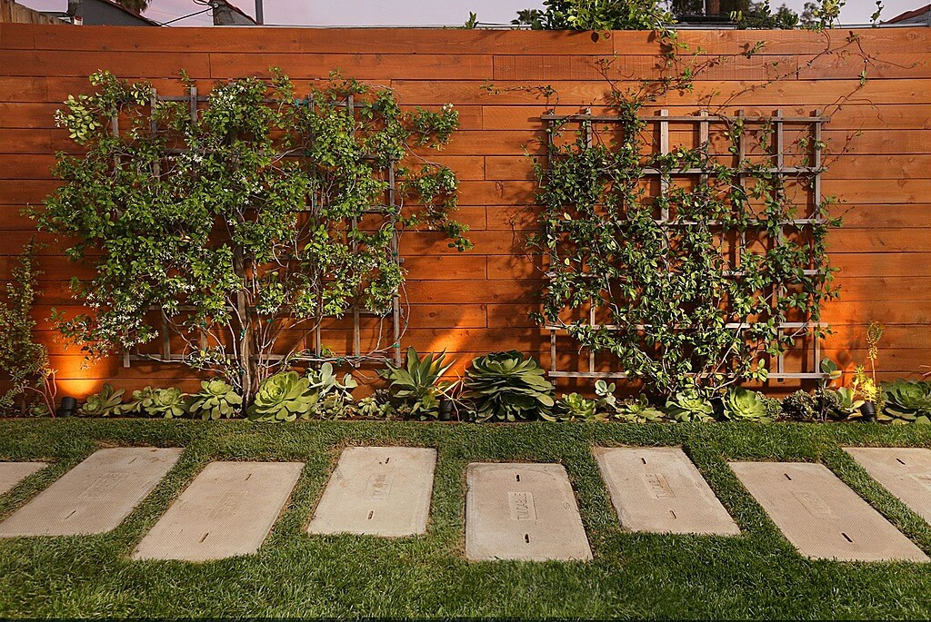 this warm wood privacy fence design features attached lattice mounted greenery