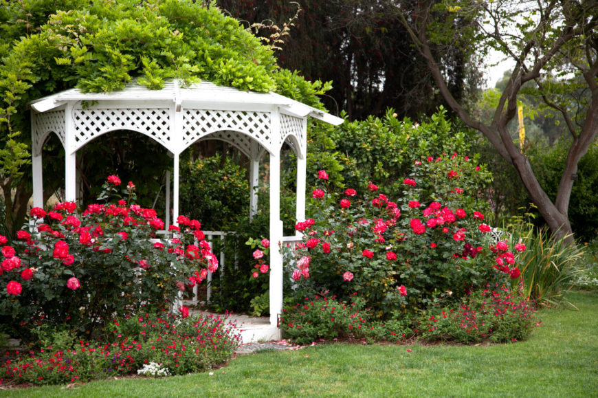 Roses and a white gazebo are a classic combination for a high end and elegant look. This sophisticated appeal can range in size and is easily personalized. Make it your own.