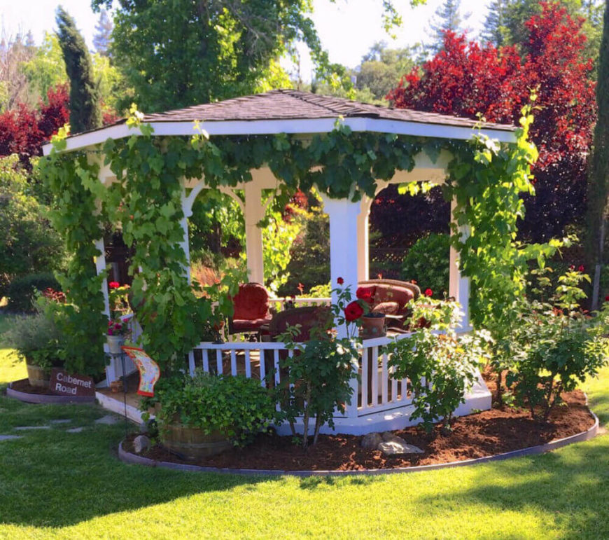Crawling vines are the fastest way to incorporate your gazebo with your landscape and garden. Vines lend an aged and natural feel.
