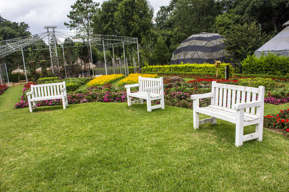 Three white wooden garden benches assembled on the grassy ground with colorful rows of flowers behind them.