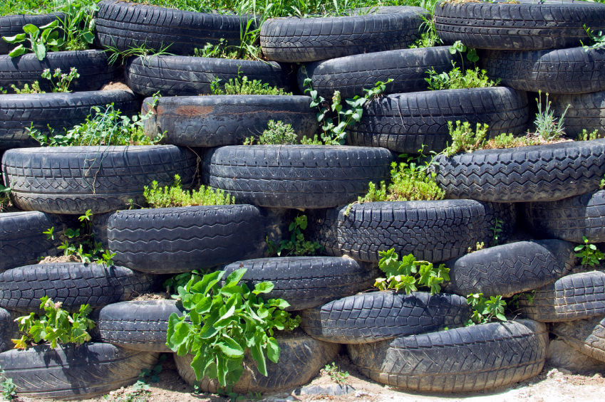 Interesting pile of tires with what appears to be a series of small herb gardens.