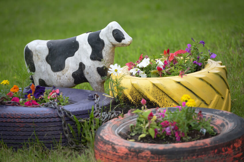 Different types of tires scattered on the grass with flowers planted in them creating a small garden.