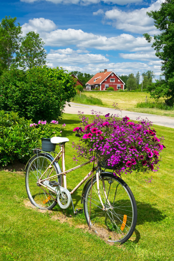 great example of a functioning bicycle turned into a planter with a huge flower arrangement on the front.