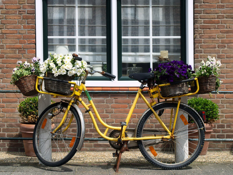 this is a bicycle decorated with flowers.