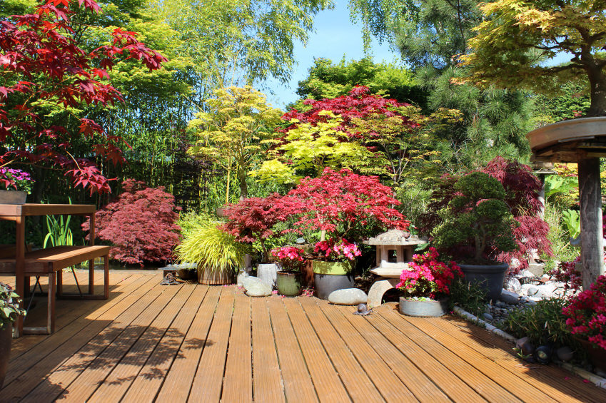 this is a zen garden on a deck that includes an terrific mixture of flowers and - Patio Flower Ideas