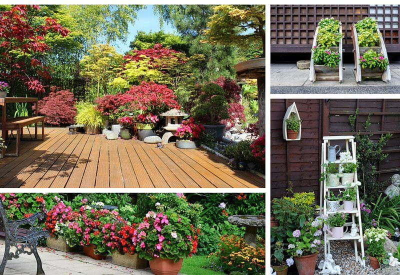 35 patio potted plant and flower ideas creative and for Backyard plant design ideas