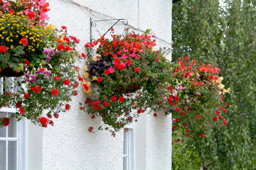 Hanging Flower Baskets Railings : Hanging flower planter ideas photos and top