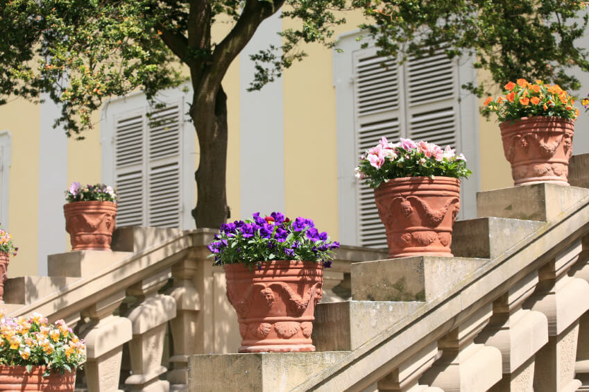 The Flowers And Gothic Designed Pots Stand Out On Plain Or Unpainted  Concrete Staircase Handrails.