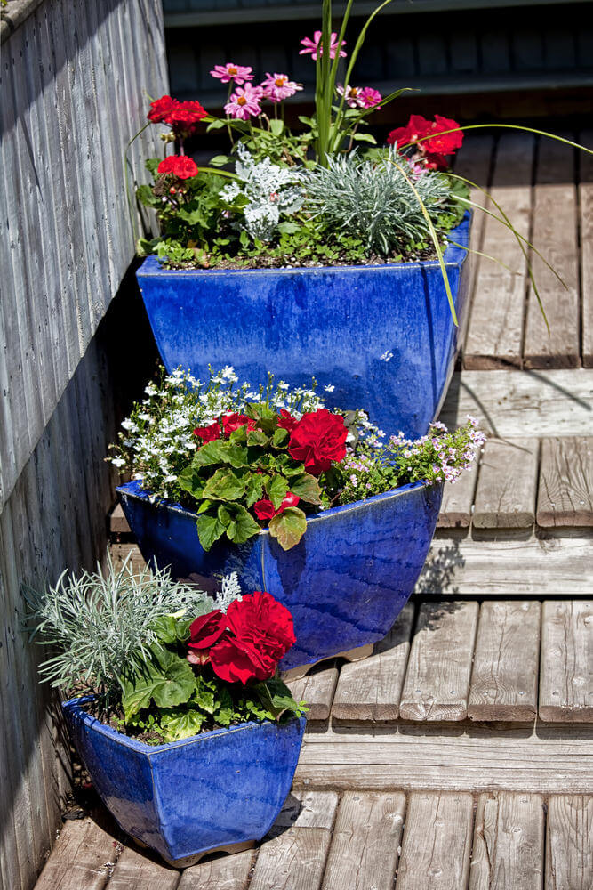 64 outdoor steps with flower planters and pots ideas for Plants for outdoor garden