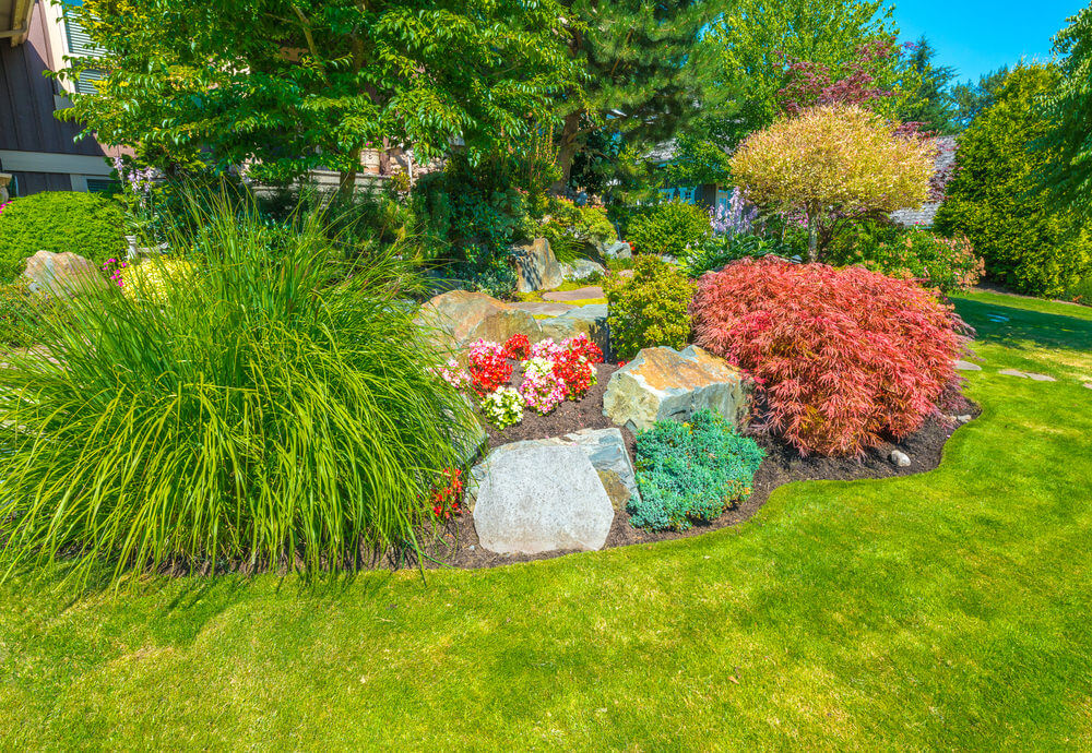 101 front yard garden ideas awesome photos for Great bushes for landscaping