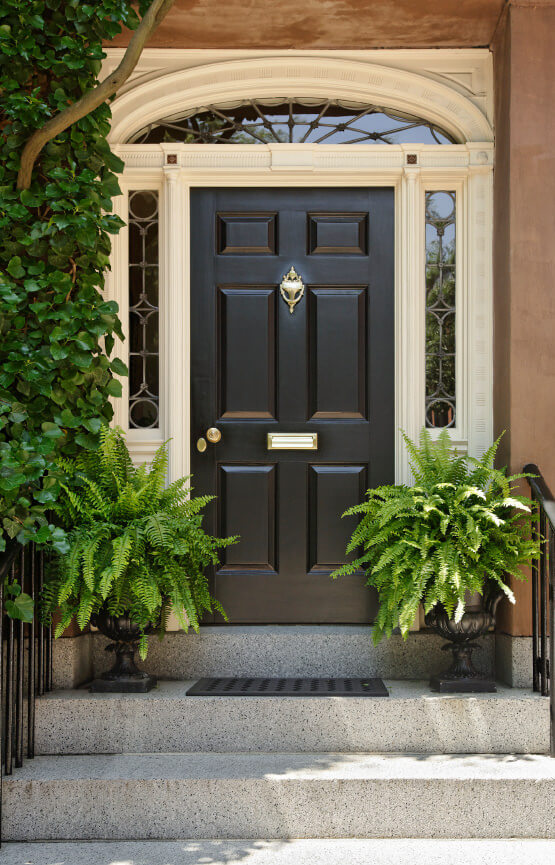 A simple and peaceful looking front door ornamented with pots of ferns and a single vine.
