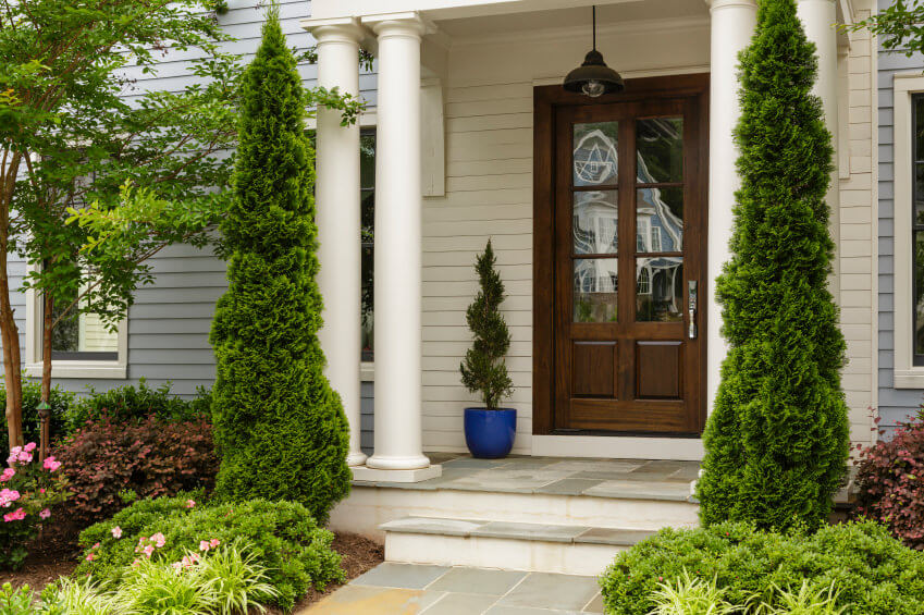 Posts of pine tree are free standing against the houses's white pillars. You can also see a spiral topiary planted in a blue pot.