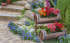 59flower-pots-on-stairs