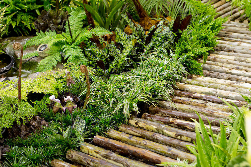 Wood branches cut in parallels lie in line across the pathway as the mini fish pond gives a dewy atmosphere.