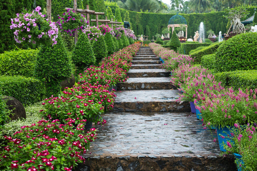 These damp steps with an alley of potted purple blossoms walk you towards a gazebo.
