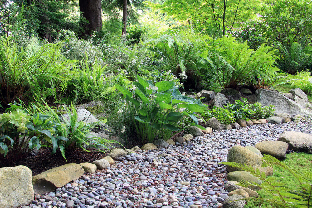 A simple assembly of small and big stones could already cover a ground and create a nice pathway. You can also touch it up with ferns to make it more lush.