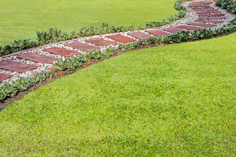 Succulents curbing the pathway while the brick stones and white stones are the coverings.