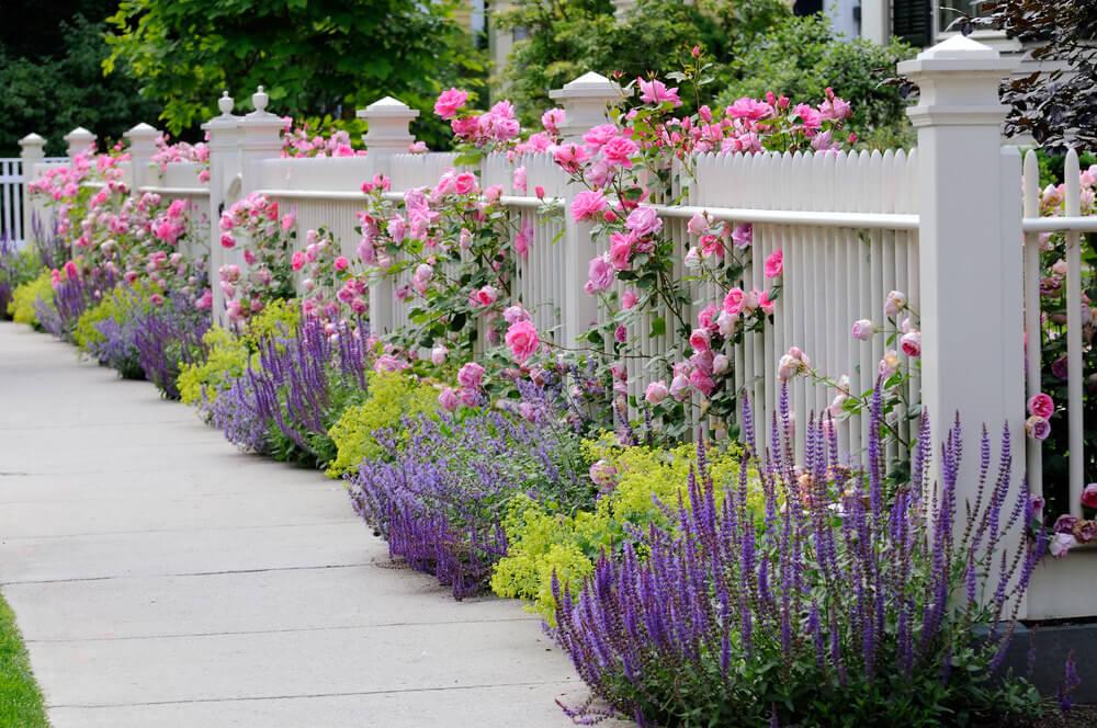 101 front yard garden ideas awesome photos home for Home and garden tv design 101
