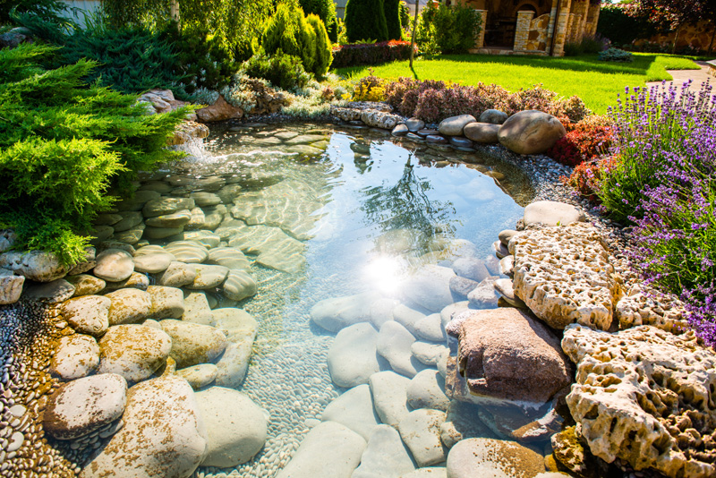 35 backyard pond images  great landscaping ideas