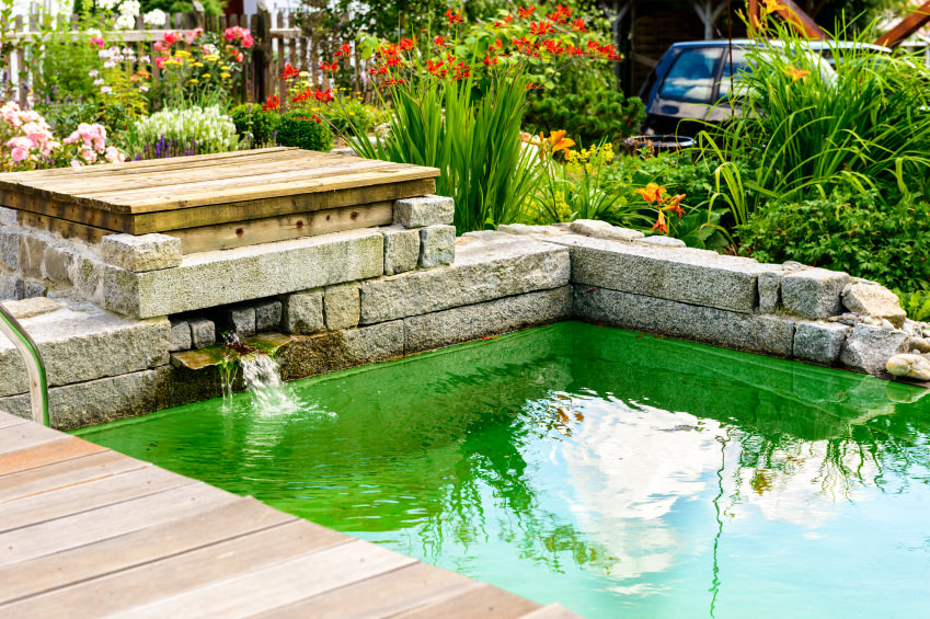 A colorful pond surrounded by cement blocks and lots of colorful flowers.