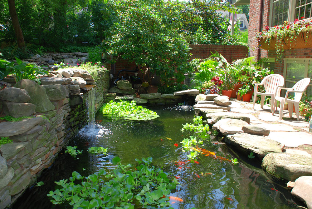A peaceful area behind the house, featuring a small waterfall, Koi fish and beautiful potted flowers. A couple chairs and a good book is all you need for a relaxed afternoon.