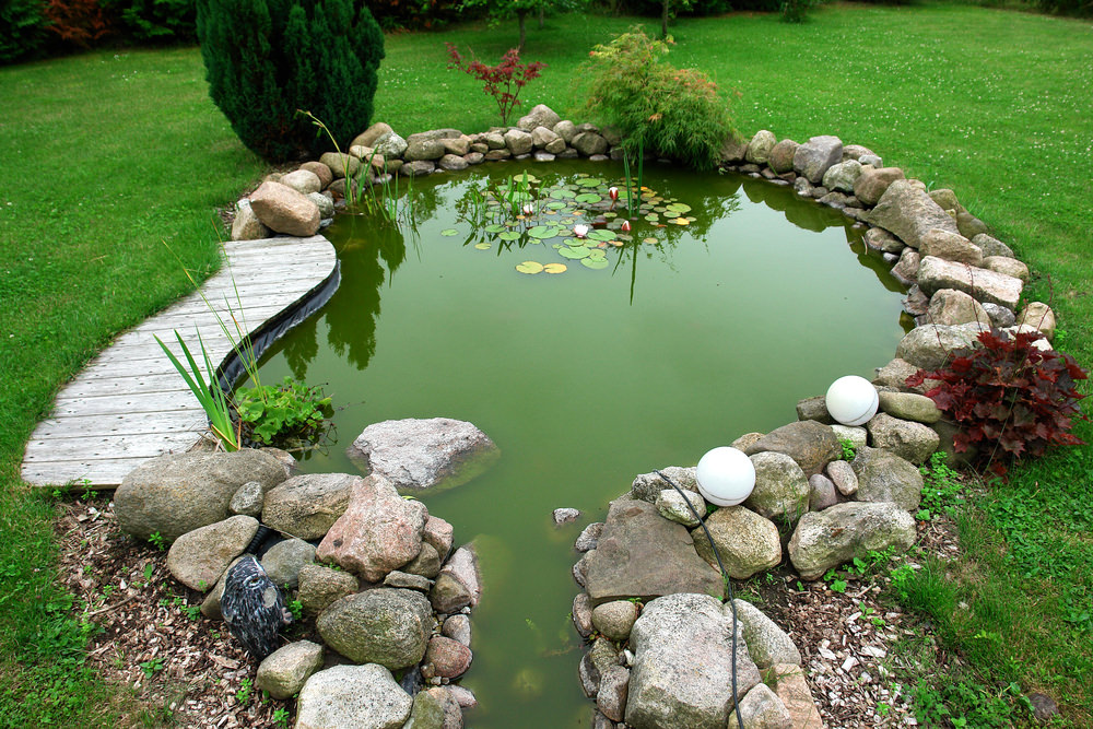 Small Uneven Backyard Ideas : Small backyard pond surrounded by uneven rocks, is a great place for