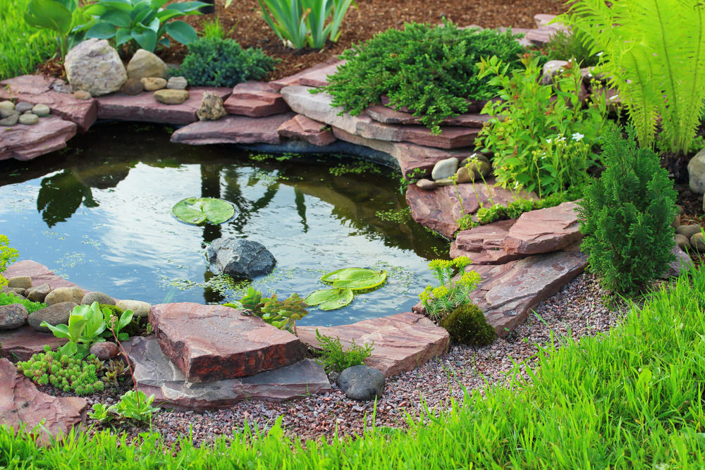 Tiny pond created by stacked red colored flagstone and surrounded by lush vegetation: a perfectly relaxing spot for someone looking for a bit of time away form the daily grind.
