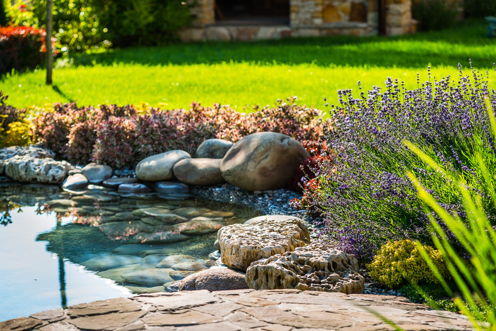 Another look at the above pond, showing off beautiful fragrant lavender flowers in bloom. Imagine sitting by that lavender bush with a good book, or a dear friend!