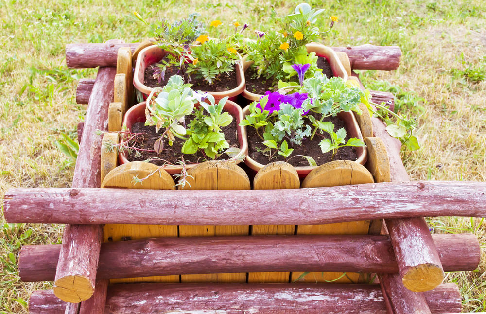 Raised beds don't even have to be in direct soil! This particular bed is kept simple with a few limbs found in the yard, some left over fencing, and pots. The point of raised beds is to let your creativity shine!