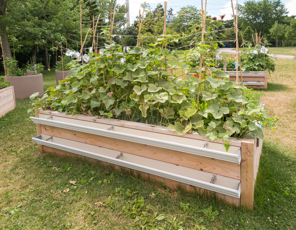 how to build a raised garden bed into the grounfd