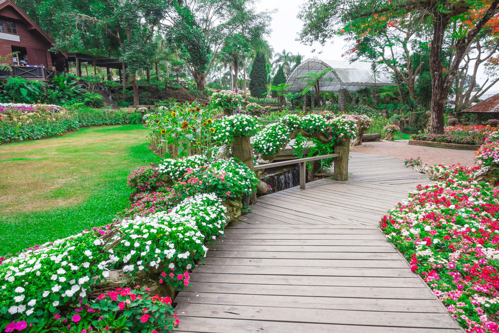 Walk in this wooden pathway with pink and white blossoms guiding you all the way. The rustic look of this pathway has been given a life and color, thanks to these colorful flowers.