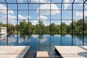 Infinity Pool with Screen Enclosure