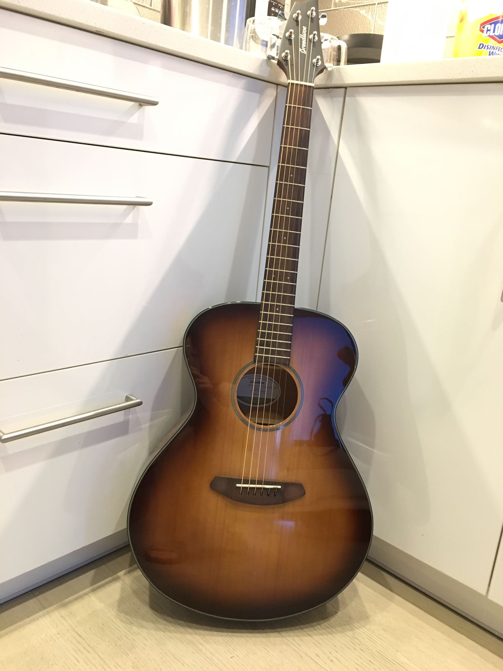 Breedlove discovery concert SB acoustic guitar