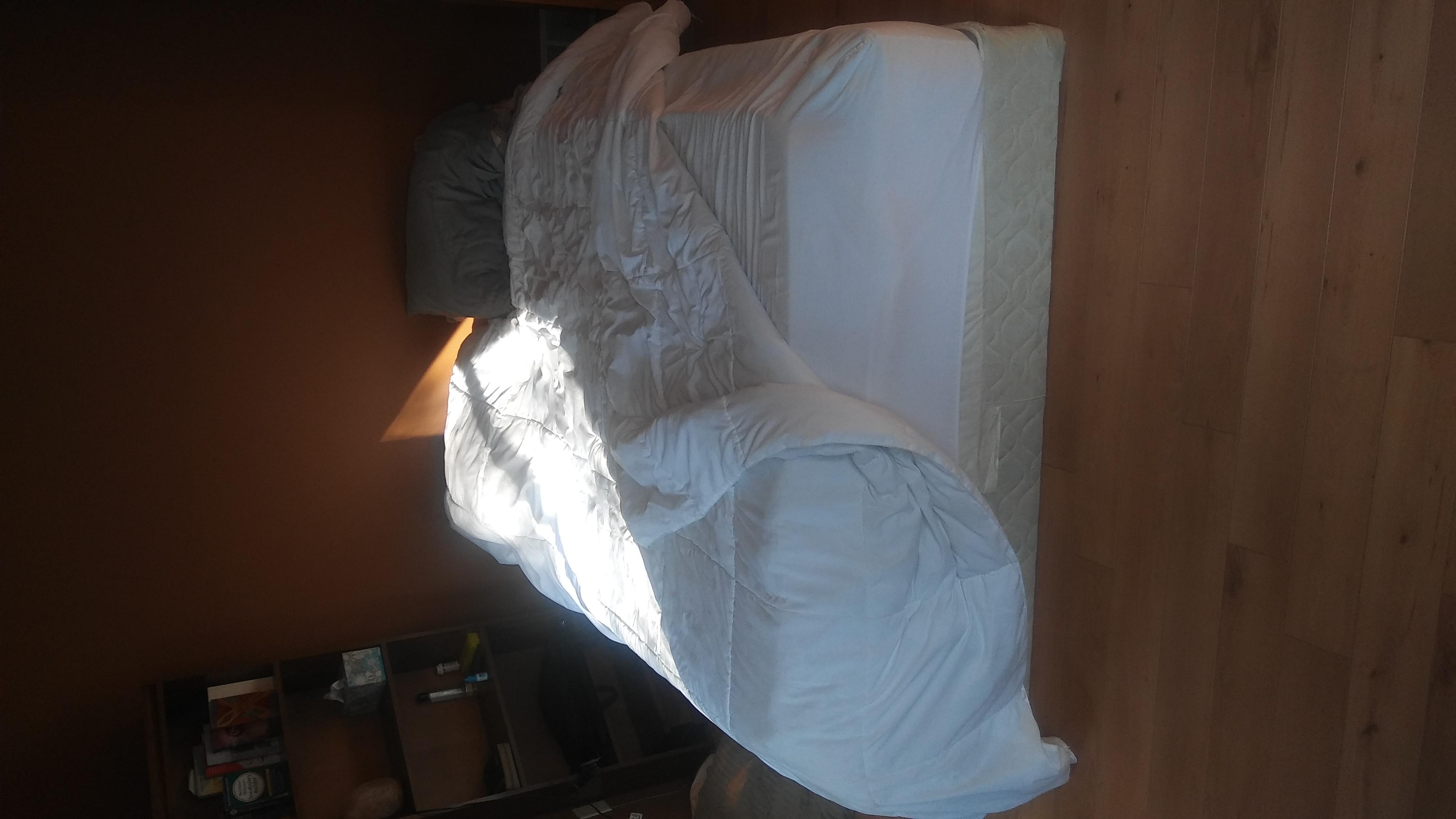 Queen Mattress/bed spring