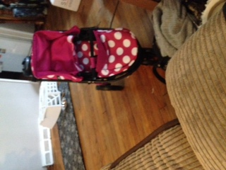 I'Coo Pacific Duo Doll Stroller